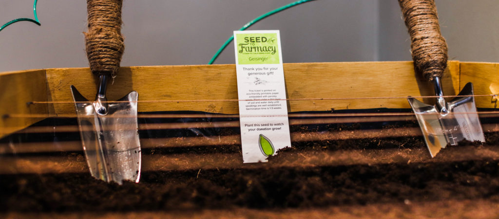 Seed to Farmacy Branding & Experience